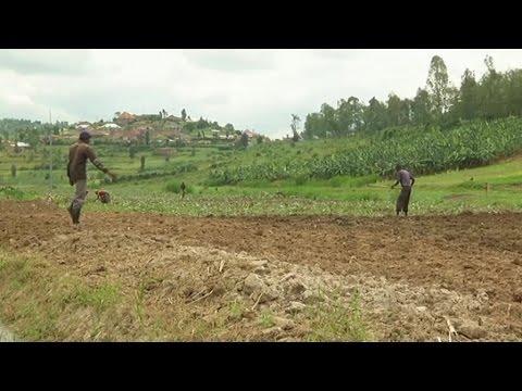 Rwanda, Croissance économique de 6,2% en 2017