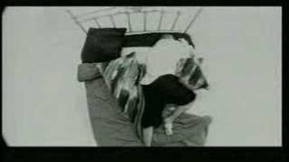 Watch Kumbia Kings Insomnio video