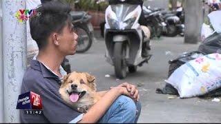 Câu chuyện cảm động về người đàn ông tàn tật và chú chó mù ngày tết - RoyalPhạm.Vn