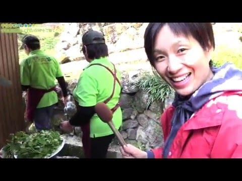 春の草花〜つみ草料理〜 「宇佐市院内つみ草料理の会」