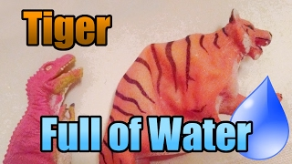 Tiger Water Inflation