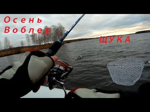 Рыбалка в конце ноября - ловим щук