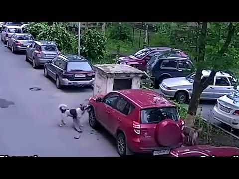 Аварии Самая-самая подборка 2017год.опа-опа!ой-ой-ой