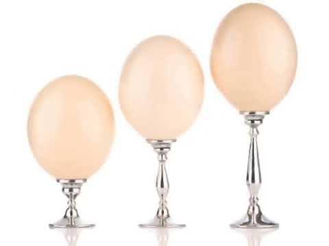 Criadero de Avestruces San Antonio
