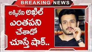 Shocking news About Akkineni Akhil's Mr Majnu Movie | #MrMajnu | TTM