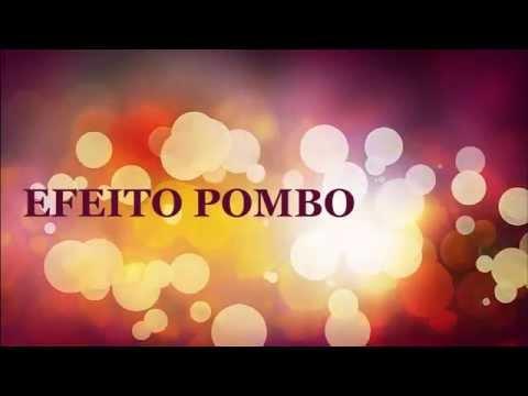 EFEITO SONORO  POMBO  POMBINHA  -  EFFECT VOICED  PIGEONS QUALIDADE VINHETA GRATIS