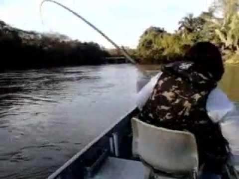 Pescadora de Sonora-MS - Pacú de quase 9 kg - Taquari