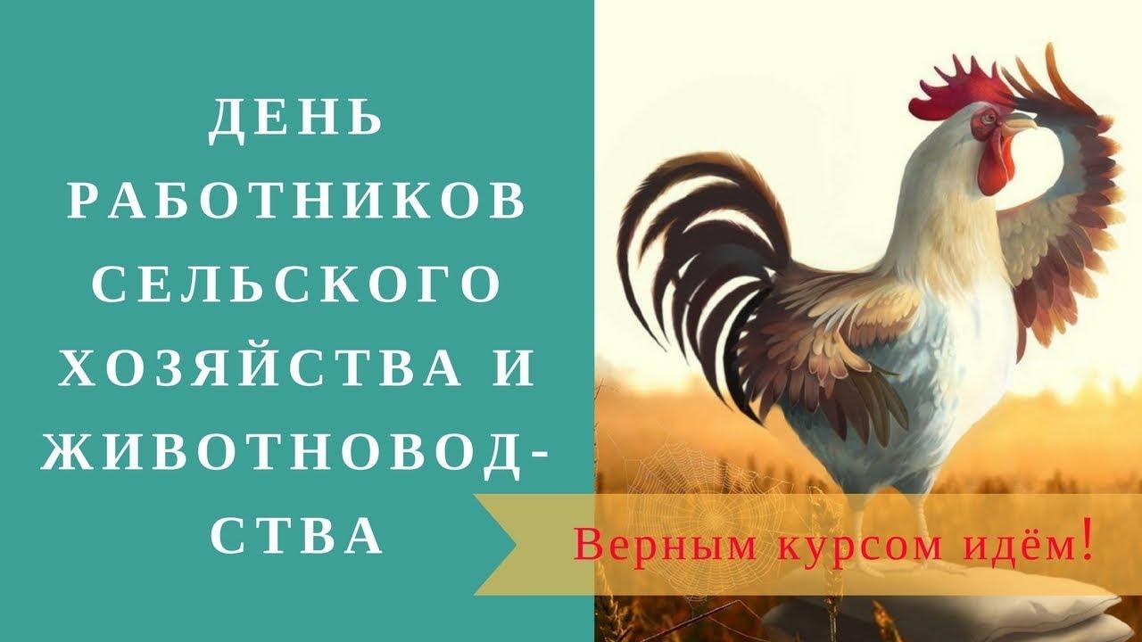 Поздравление с днем животновода 59