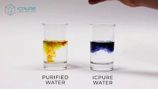 pH Test | ICPURE Alkaline Ionized Water VS Purified Water