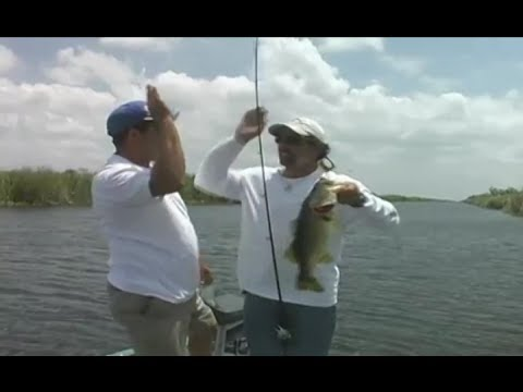 Mighty bite commercial mighty bite as seen on tv fishing for Fishing lure as seen on tv