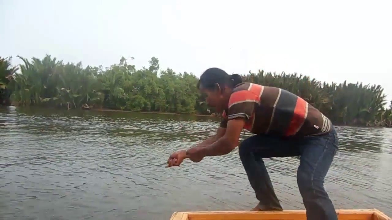 Fishing Whipray Leopard At the mouth of the river citra   C n R   Fishing Mania Borneo