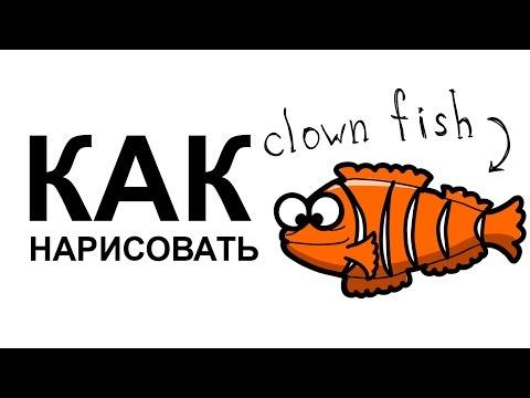 Видео как нарисовать рыбу карандашом поэтапно