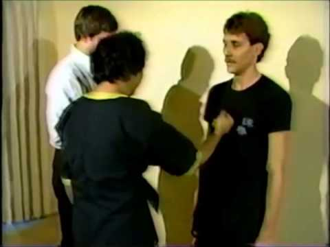 GGM Leung Ting - one inch punch (Wing Tsun, Wing Chun Schlagtechnik) Image 1