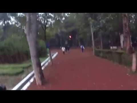 Viveros Coyoacan, 10º 8.66 Km