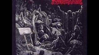 Merciless - Pure Hate! (Studio)