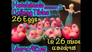 26 eggs Hatchimals CollEGGtibles Season 2 Hatching Surprise Blind Bag Baby Animal Eggs with My Elsa