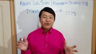 KAWM LUS SUAV: Vim li cas peb thiaj ho nyiam kawm lus Suav - Why Learn Chinese