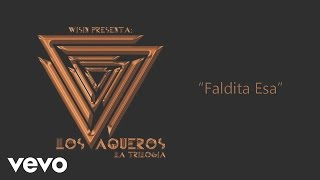 Wisin - Faldita Esa (Cover Audio)