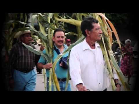 Peregrinación de campesinos con su milpa en Zacoalco