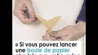 Harvard révèle comment faire le meilleur avion en papier au monde