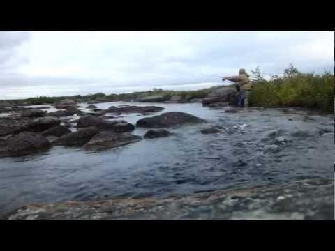 Как быстро ловить форель на вертушку. (для fishtour.by)