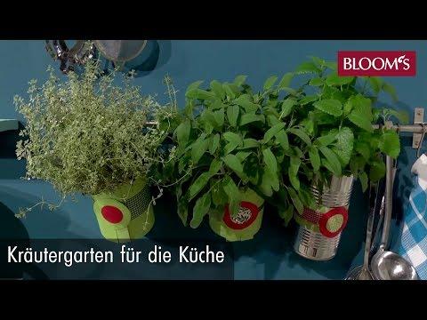 Kräutergarten Für Die Küche: Dekorativ Und Lecker