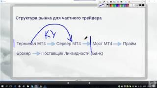 Структура рынка Forex  От ДЦ до Межбанка. Фрагмент вебинара. Виталий Сергиенко
