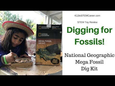 Digging for Fossils: National Geographic's Mega Fossil Dig Kit