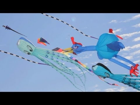 Insane Kites Toronto Beaches Windfest 2011  5DMII footage