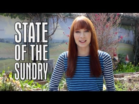 State of the Sundry