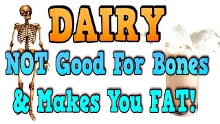 Dairy: Bad For Bones, Great For Fat Gain