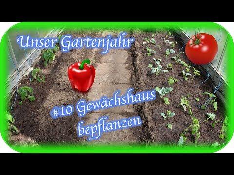 Unser Gartenjahr   #10 - Gewächshaus bepflanzen   Engelchen
