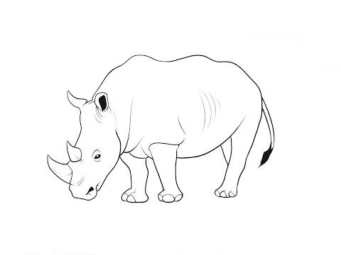 Рисуем карандашом носорог