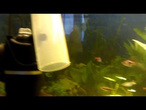 Крышка для аквариума своими руками с подсветкой