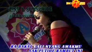 download lagu Sayang - Elsa Safira - New Kendedes - 38 gratis