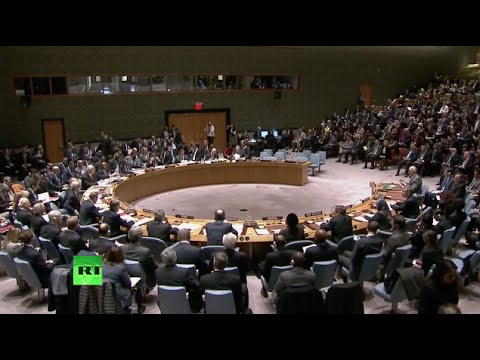 UN Security Council unanimously adopts Syrian roadmap resolution (Full video)