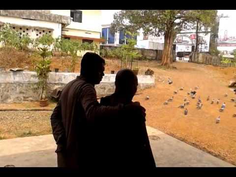 Kerala Kochi Street Social Worker Murukan S Mob 09846051098 ,theruvoram.org video