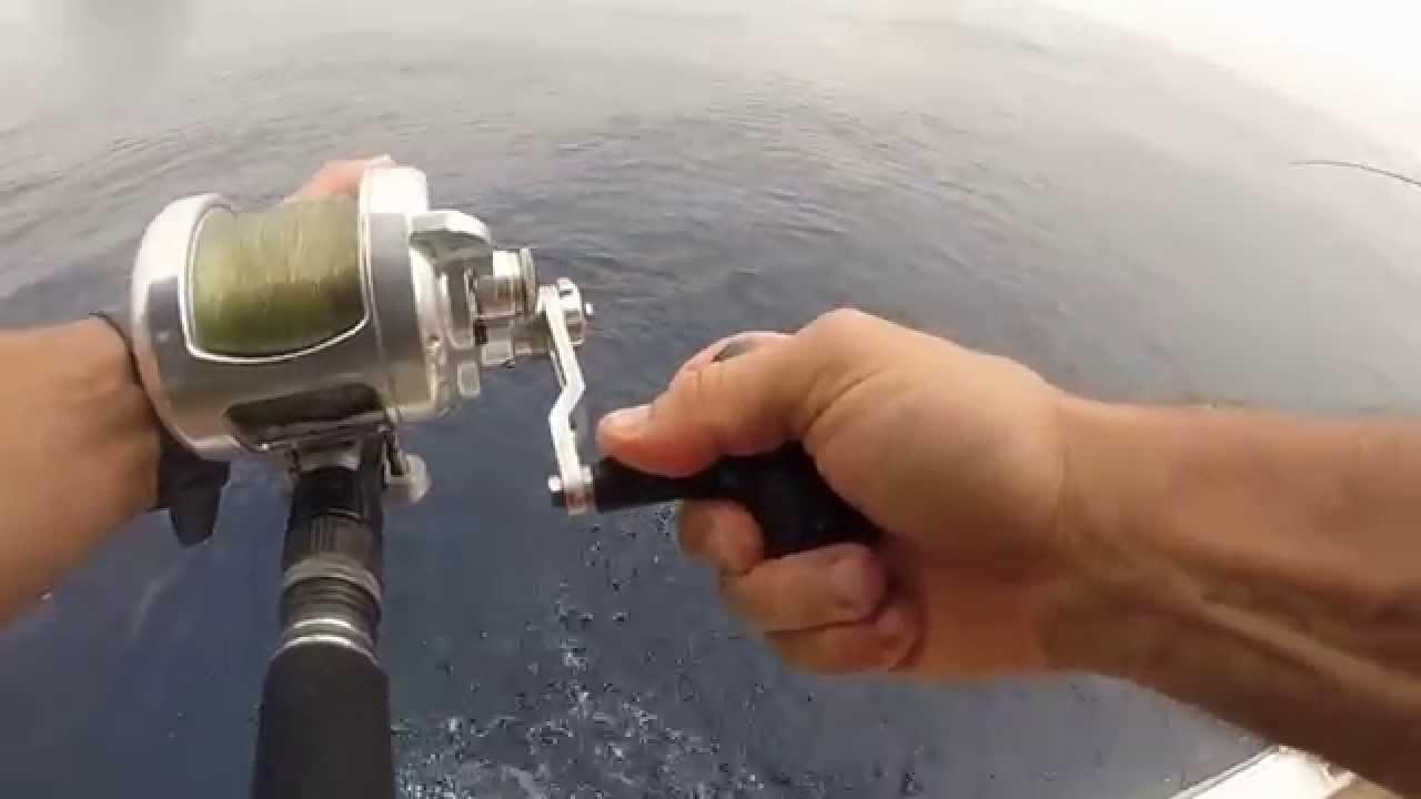 Fishing trip onboard El Capitan 8 26 15