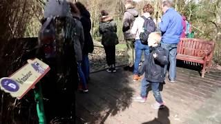 Dierenrijk Nuenen Maart 2019 -  deel 2