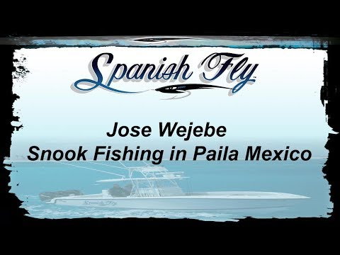 Snook Fishing Boca Paila Mexico - Sneaky Little Snook - Jose Wejebe / Spanishflytv