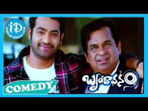 Brindavanam Movie Back2Back Comedy Scenes - Jr NTR - Samanatha...