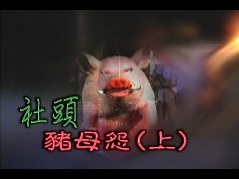 台劇-台灣奇案-社頭豬母怨