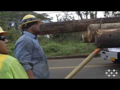Hawaii Electric Light crews post Iselle (Part 4 of 4)