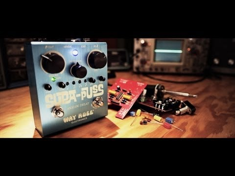 Way Huge Supa-Puss Analog Delay