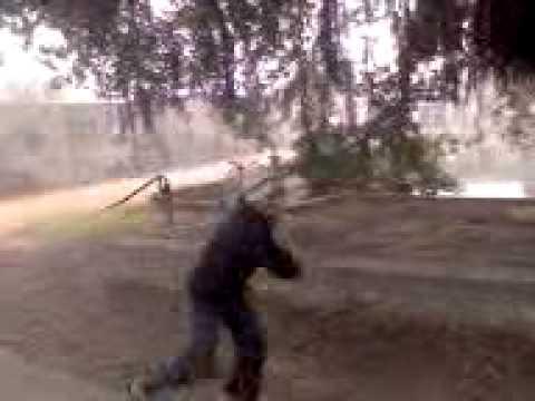 Shaktiman.3gp video