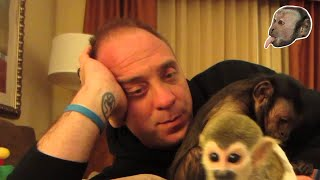 Capuchin Monkey and Baby Squirrel Monkey