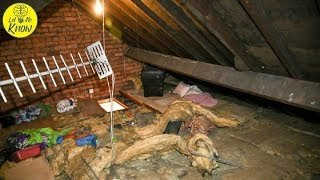 Woman Finds Ex Living In Her Attic, 12 Years After Their Breakup