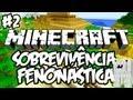 Grrr, Foge! - Sobrevivência Fenonástica: Minecraft #2