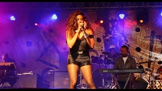 Helen Berhe Live at Selam Ethiopia Festival (Ethiopian music)