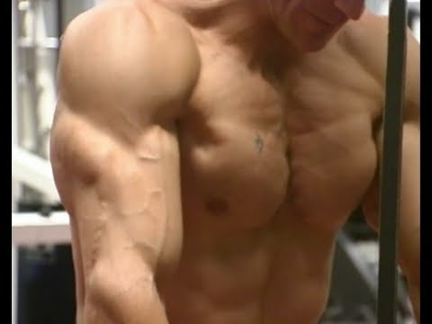Certified Best Chest Workout Bodybuilding Program-Dumbbells with Victor Costa Image 1